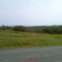 tower-hill-rd-franklin-county-massachusetts-berkshire-mts-d2r2